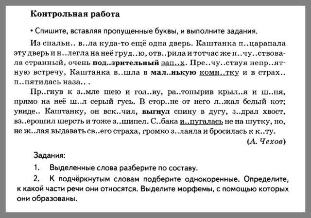 Русский язык 5 класс Разумовская. Контрольная работа 3