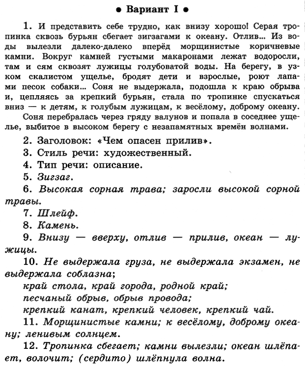ПР-05 Русский 5 Ладыженская